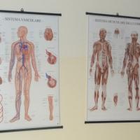 medicalworkcenter_sala-corsi3
